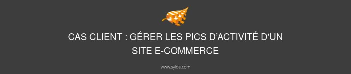 pics d'activité d'un site e-commerce