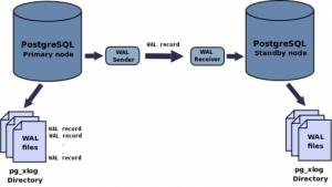 Replication postgresql et mariadb - schema