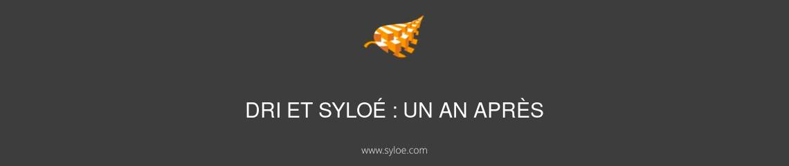 syloé et dri