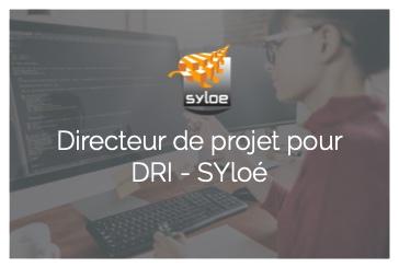 Directeur de projet pour Syloé - DRI